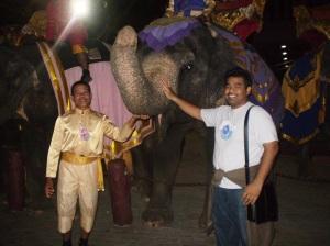 Takut gajah,..